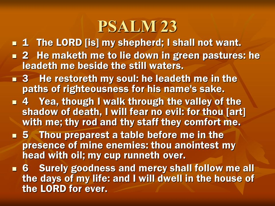 PSALM 23 1 The LORD [is] my shepherd; I shall not want.
